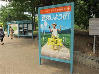特別展「昆虫」(国立科学博物館)【東京考察#347】