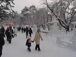 弘前城雪灯籠祭[冬の津軽半島#3]