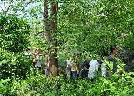 福島の森・亜熱帯[ネットでアクアマリンふくしま#2]