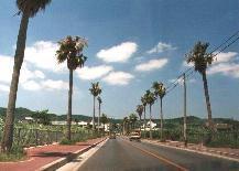 沖縄本島(最果て紀行#5)