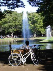 代々木公園【東京考察#304】