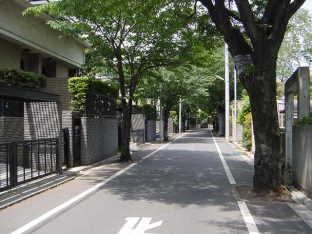 成城の街並み(高級住宅街)【東京考察#84】