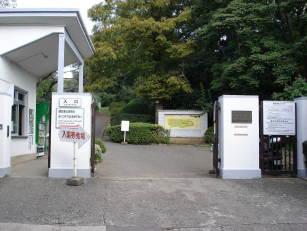 小石川植物園(白山)【東京考察#208】