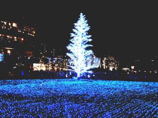 東京ミッドタウンのクリスマスイルミネーション(六本木)【東京考察#289】