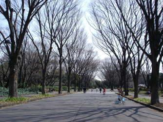 駒沢オリンピック公園【東京考察#275】