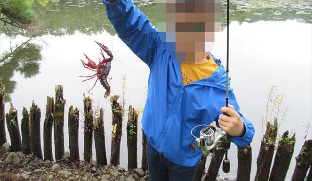 南湖公園で釣り&いつもの池【目指せ!アングラー#33】